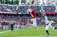 STANFORD, CA - NOVEMBER 23, 2013: Francis Owusu catches a touchdown during Stanford's game against Cal. The Cardinal defeated the Bears 63-13.