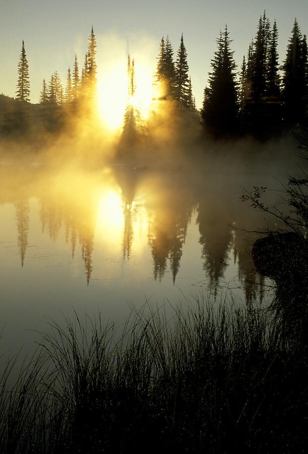 Sunrise through fog reflected on Reflection Lake, Mount Rainier National Park, Washington