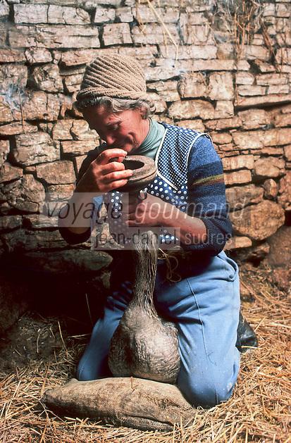 Europe/France/Midi-Pyrénées/46/Lot/Env de Gourdon/Pomeyrol: Gavage des oies<br /> PHOTO D'ARCHIVES // ARCHIVAL IMAGES<br /> FRANCE 1980