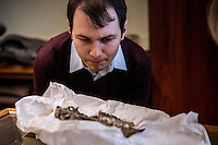Belgium. Brussels. London. 17th November 2015<br /> (Name needed) inspects the skull of an ancient dog before cutting a piece for DNA testing.<br /> Andrew Testa for the New York Times
