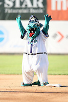 July 14, 2008: Fort Wayne Wizards Mascot at Memorial Stadium in Fort Wayne, IN.  Photo by:  Chris Proctor/Four Seam Images