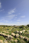 Israel, Shephelah, Hurvat Hazan, site of a settlement from the Roman period
