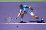 David Ferrer (ESP) defeats Tommy Haas (GER) 4-6, 6-2, 6-3