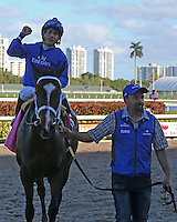 HALLANDALE BEACH, FL - FEBRUARY 11: Dickinson (KY) #8 with jockey Paco Lopez heads to the winners circle after winning the Suwannee River GIII Stakes at Gulfstream Park on February 11, 2017 in Hallandale Beach, Florida. (Photo by Liz Lamont/Eclipse Sportswire/Getty Images)