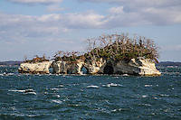 """Matsushima Bay is famous for its view of over 260 tiny islands and considered to be one of Japan's Three Great Sights - Nihon Sankei. (The other two are Miyajima Island in Hiroshima and Amanohashidate in Kyoto Prefecture).  Some of the islands have unusual shapes, most are covered with pines, as Matsushima means """"pine island"""". Its beauty was immortalized in one of Basho's most famous poems. Matsushima Bay is also famous for oysters farmed in the bay.  Fukuurajima is a larger island to the north reached by a 250 meter long vermilion bridge and has a pleasant garden for strolling.  Matsushima is a very popular destination for Japanese sightseers with ferries and sightseeing boats leaving hourly throughout the year."""