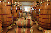 Chateau Peuch-Haut, St Drezery. Gres de Montpellier. Languedoc. Barrel cellar. Wooden fermentation and storage tanks. France. Europe.