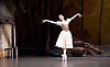 Giselle Royal Ballet 24th February 2016