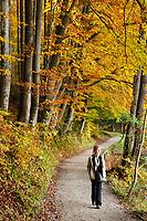 Deutschland, Bayern, Oberbayern, junge Frau beim Spaziergang durch Herbstwald, allein | Germany, Bavaria, Upper Bavaria, young woman walking through autumn forest