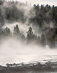 Steam rises from a nearby geyser basin on Firehole Lake Drive in yellowstone.