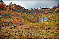Valley scene in Sinks of Gandy West Virginia with rolling hills, old shed and bright orange leaves