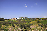 Israel, Lower Galilee, a view of Adi from Zippori forests Scenic road