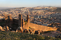 General view of Fez, Morocco, pictured on February 22, 2009 in the warm evening light, from the mountain of the Merenid tombs. Fez, Morocco's second largest city, and one of the four imperial cities, was founded in 789 by Idris I on the banks of the River Fez. The oldest university in the world is here and the city is still the Moroccan cultural and spiritual centre. Fez has three sectors: the oldest part, the walled city of Fes-el-Bali, houses Morocco's largest medina and is a UNESCO World Heritage Site;  Fes-el-Jedid was founded in 1244 as a new capital by the Merenid dynasty, and contains the Mellah, or Jewish quarter; Ville Nouvelle was built by the French who took over most of Morocco in 1912 and transferred the capital to Rabat. Picture by Manuel Cohen.