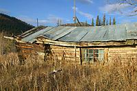 Relic log cabin in the mining community of Nolan, near Wiseman, Alaska