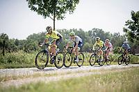"""Kenny Dehaes (BEL/Wallonie-Bruxelles) over the """"Varent"""" cobbles <br /> <br /> 72nd Halle - Ingooigem 2019 (BEL/1.1)<br /> 1 day race from Halle to Ingooigem (201km)<br /> <br /> ©kramon"""