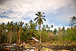 A man and his son stand amid the devastation of the 2009 tsunami in Samoa.<br />