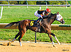Big Blue Nation winning at Delaware Park on 10/3/16