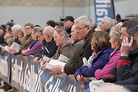 Stirling Bull Sales 2018<br /> Crowds watching the judging at the Stirling Bull Sales<br /> &copy;Tim Scrivener Photographer 07850 303986<br /> ....Covering Agriculture In The UK....