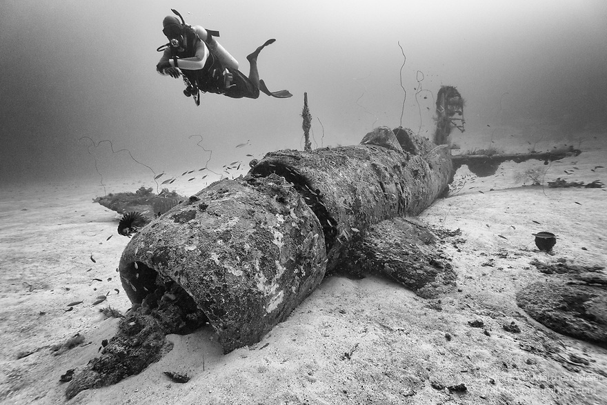 Munda, Western Province, Solomon Islands; a scuba diver swimming over the fuselage of an F4U Corsair fighter plane, which crashed into the sea during WWII, resting upright on the sandy sea floor, nearly fully intact except for it's propeller
