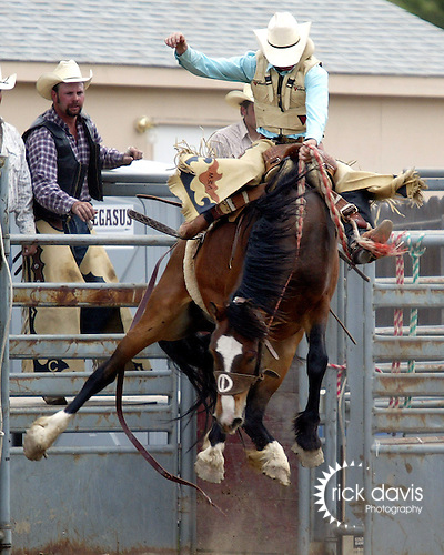 PRCA cowboy Wade Mosher of Hugo, Colorado catches big air as his Cervi Championship Rodeo Company saddle bronc explodes from the chute during action at the annual Father's Day Rodeo June 15, 2008 in the small mountain town of Evergreen, Colorado.