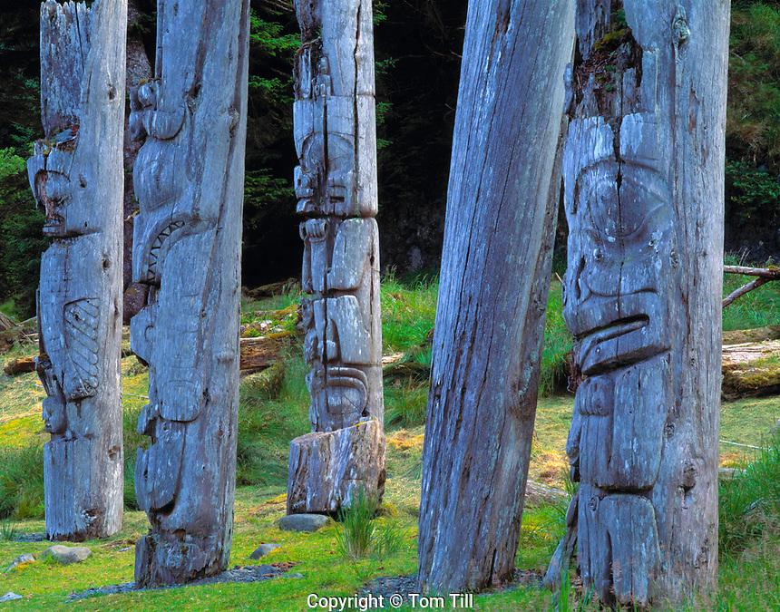 Ancient Haida Totems, South Moresby National Park, Haida Gwaii, Queen Charlotte Islands, British Columbia, Canada