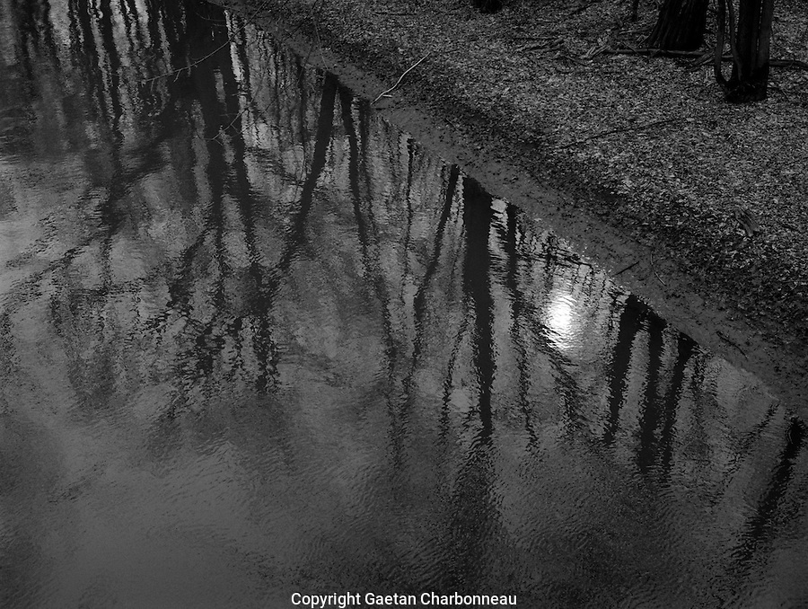 Moonlight reflecting on a river