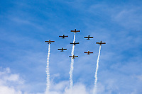 Nine planes flying in formation, Arlington Fly-In 2016, Washington State, USA.