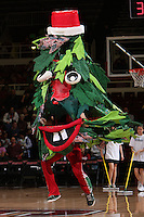 STANFORD, CA - DECEMBER 13:  The Stanford Tree during Stanford's 96-60 win over DePaul on December 13, 2009 at Maples Pavilion in Stanford, California.