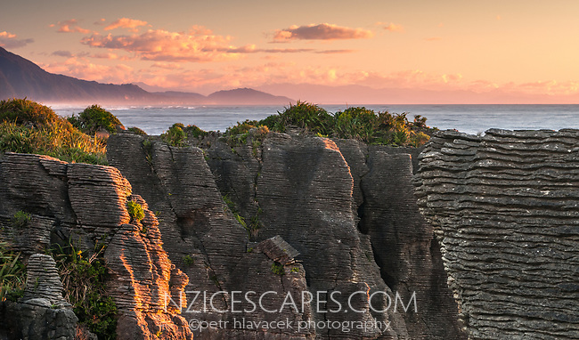 Pancake rocks and blowhole, limestone formations on rugged coast in Punakaiki during sunset, Paparoa National Park, Buller Region, West Coast, New Zealand, NZ