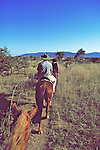 Great Zimbabwe Horseback Safari