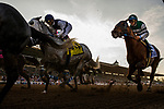 ARCADIA, CA - FEBRUARY 03: Accelerate #3, ridden by Victor Espinoza settles in the back of the pack in the San Pasqual Stakes at Santa Anita Park on February 3, 2018 in Arcadia, California. (Photo by Alex Evers/Eclipse Sportswire/Getty Images)