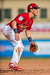 24 February 2019: St. Louis Cardinals top prospect infielder Tommy Edman in action during a Spring Training game against the Washington Nationals at Roger Dean Stadium in Jupiter, Florida. The Cardinals fell to the Nationals 12-2 in Grapefruit League play. Mandatory Credit: Ed Wolfstein Photo *** RAW (NEF) Image File Available ***