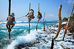Sri Lanka, Ceylon, Southern Province, Galle, Stilt fisherman on the coast near Galle between Unawatuna and Weligama