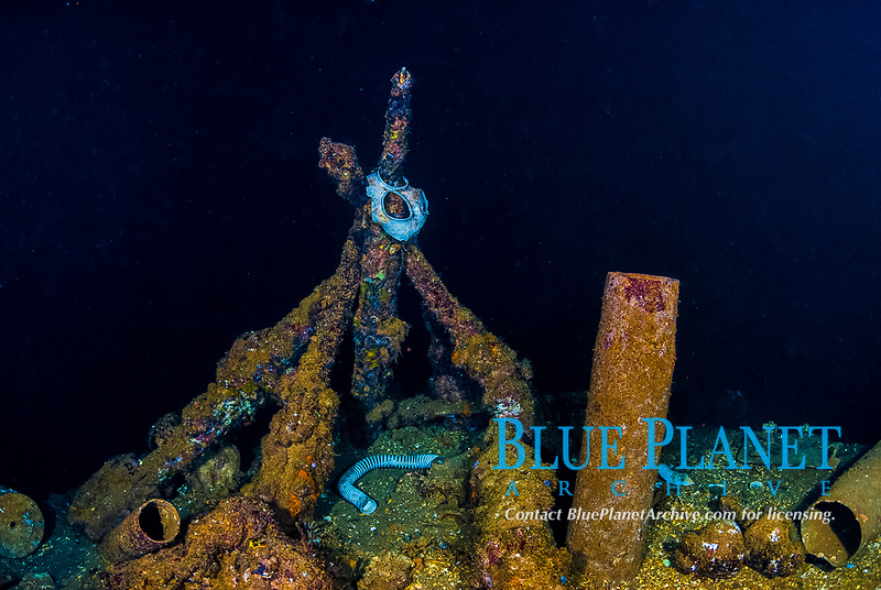 Gas mask, rifles, shell casings, rusty, encrusted, hold, Operation Hailstone, Wreck, WWII, Japanese shipwreck, Fujikawa Maru, Truk, Chuuk Lagoon, Micronesia, Pacific Ocean