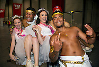 Costumed fans during the 2016 HSBC Wellington Sevens at Westpac Stadium, Wellington, New Zealand on Saturday, 30 January 2016. Photo: Dave Lintott / lintottphoto.co.nz