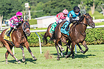 July 31, 2020: She's My Type (FR) #9, ridden by Joel Rosario and trained by Christophe Clement win the Coronation Cup at Saratoga Race Course, in Saratoga, New York. Rob Simmons/Eclipse Sportswire/CSM
