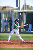Max Manning (8) of Marin Catholic High School in Larkspur, California during the Baseball Factory All-America Pre-Season Tournament, powered by Under Armour, on January 13, 2018 at Sloan Park Complex in Mesa, Arizona.  (Zachary Lucy/Four Seam Images)