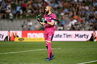 31st January 2020; Netstrata Jubilee Stadium, Sydney, New South Wales, Australia; A League Football, Sydney FC versus Brisbane Roar; Andrew Redmayne of Sydney gives instructions to his defenders as they break forward