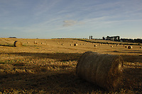 Early morning scene of harvested corn. North Yorkshire,England, Sep 2007.