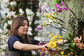 LONDON, ENGLAND - Royal Botanic Gardens, Kew, Tropical Extravaganza Festival 2011, Kew Diploma Student Tsuyeko Western