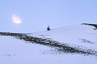 MOON PHASES<br />