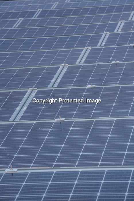DDR forth floor solar panel and grass