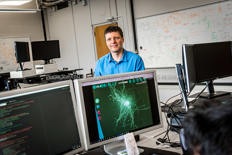 4/19/2017&mdash; Seattle, WA, USA<br /> <br /> University of Washington professor, Zoran Popovic, in his lab where students and developers are helping him build the videogame Mozak. <br /> <br /> The game has been created by a team at the University of Washington in Seattle led by professor Popovic and uses the skills of novice players to model brain cells with a much higher degree of accuracy than conventional computer-based modeling tools. Mozak is first collaborating with the Allen Institute for Brain Science in Seattle on the effort, but there will eventually be other participants from academia that use Mozak. <br /> <br /> Photograph by Stuart Isett. &copy;2017 Stuart Isett. All rights reserved.