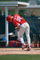 Philadelphia Phillies Curtis Mead (38) gets hit by a pitch during a minor league Spring Training game against the Pittsburgh Pirates on March 13, 2019 at Pirate City in Bradenton, Florida.  (Mike Janes/Four Seam Images)