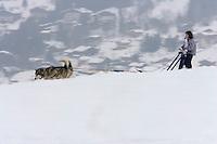 Europe/France/Rhone-Alpes/74/Haute-Savoie/Megève:lnitiation à la randonnée en traineau à chiens par Bruno au hameau du Mont du Villard