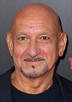 HOLLYWOOD, LOS ANGELES, CA, USA - AUGUST 13: Sir Ben Kingsley at the World Premiere Of Relativity Media's 'The November Man' held at the TCL Chinese Theatre on August 13, 2014 in Hollywood, Los Angeles, California, United States. (Photo by Xavier Collin/Celebrity Monitor)