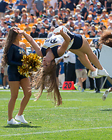 Pitt cheerleader. The Pitt Panthers defeated the Villanova Wildcats 28-7 at Heinz Field, Pittsburgh, Pennsylvania on September 3, 2016.