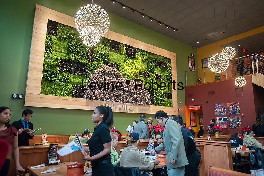 """The grand opening of the new Applebee's casual dining restaurant in the East River Plaza shopping center in New York is seen on Monday, December 10, 2012. The new restaurant, which is applying for LEED Gold certification, uses rainwater collected from the roof, waterless urinals and contains a """"Living Wall"""" of plants to help purify the air among other eco-friendly features. (© Richard B. Levine)"""