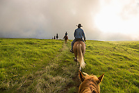 A Paniolo Adventures guide takes visitors horseback riding over the mystical hills of Kohala, Hawai'i Island. This part of Kohala is in Waimea, near sunset.