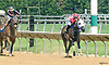 Goodbyeseeulater winning at Delaware Park on 6/22/17