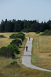 Bicycle trail at UCSC